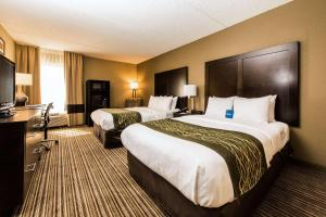 Comfort Inn Lehigh Valley West, Hotels  Fogelsville - big - 36