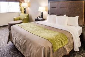 Comfort Inn Downtown Charleston, Hotely  Charleston - big - 40
