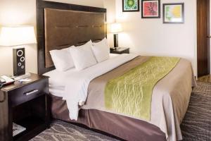 Comfort Inn Downtown Charleston, Hotely  Charleston - big - 3