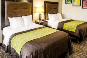 Comfort Inn Downtown Charleston, Hotely  Charleston - big - 2