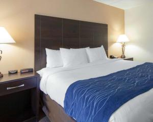 Comfort Inn Oak Ridge, Hotels  Oak Ridge - big - 7