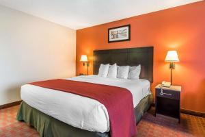 Quality Inn & Suites La Vergne, Hotel  La Vergne - big - 13