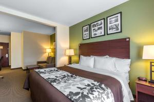 Sleep Inn & Suites Bush Intercontinental - IAH East, Hotels  Humble - big - 19
