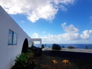 MAGNIFICENT RURAL ONE BEDROOM APARTMENT BY THE SEA, Los Llanillos