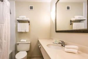 Quality Inn near Finger Lakes and Seneca Falls, Hotely  Waterloo - big - 23