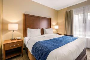 Comfort Inn & Suites IAH Bush Airport – East, Hotely  Humble - big - 3