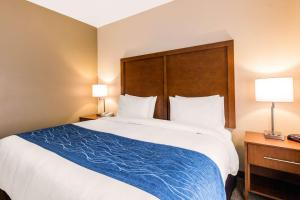 Comfort Inn & Suites IAH Bush Airport – East, Hotel  Humble - big - 21