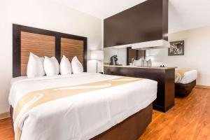 Quality Inn & Suites - Myrtle Beach, Hotely  Myrtle Beach - big - 12