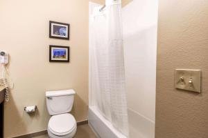 Comfort Inn & Suites IAH Bush Airport – East, Hotely  Humble - big - 2