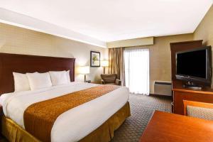 Quality Inn - Kitchener - Hotel