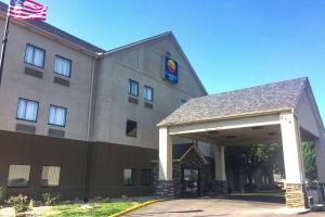 Comfort Inn Grain Valley, Hotel  Grain Valley - big - 14