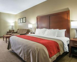 Comfort Inn Grain Valley, Hotels  Grain Valley - big - 8