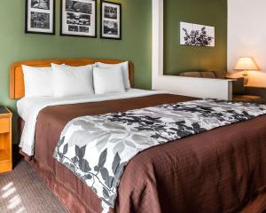 Sleep Inn & Suites Albemarle, Hotel  Albemarle - big - 29