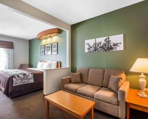 Sleep Inn & Suites Albemarle, Hotel  Albemarle - big - 18