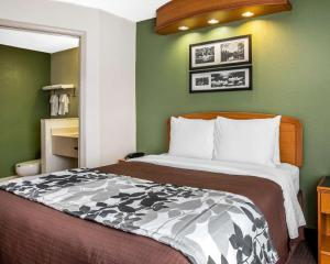 Sleep Inn & Suites Albemarle, Hotel  Albemarle - big - 14