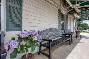 Rodeway Inn, Motely  Asheville - big - 16