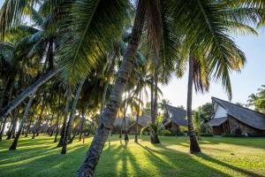 La Pirogue Resort & Spa (35 of 92)