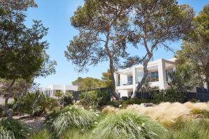 Seven Pines Resort Ibiza (8 of 137)