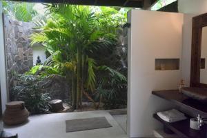 Casas de Agua, Apartmánové hotely  Pláž Santa Teresa - big - 23