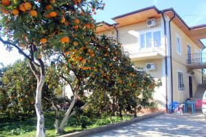 Отель Дивный Сад