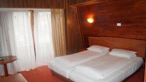 Pensiunea Casa Dumitru - Hotel - Busteni