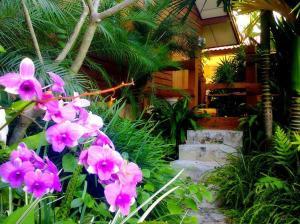 หอพักวัฒนาธรรมชาติสุด - Muang Suang