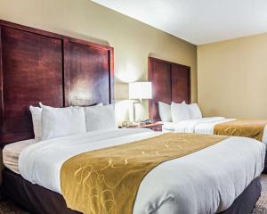 Comfort Suites Sumter, Hotels  Sumter - big - 20