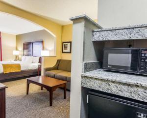 Comfort Suites Sumter, Hotels  Sumter - big - 26