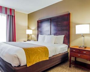 Comfort Suites Sumter, Hotels  Sumter - big - 35