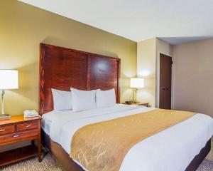 Comfort Suites Sumter, Hotels  Sumter - big - 42