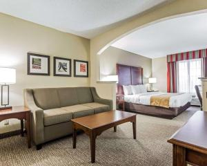 Comfort Suites Sumter, Hotels  Sumter - big - 45