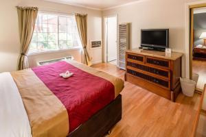 Econo Lodge Inn & Suites, Hotely  South Lake Tahoe - big - 28
