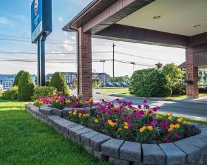 Comfort Inn Fredericton - Fredericton