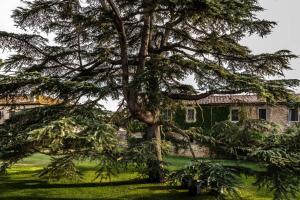 La Pescaia Resort (14 of 57)