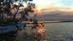 Cosy Cottage, Kangaroos & Enjoy Lake Weyba