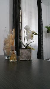 Galliera Street - AbcAlberghi.com