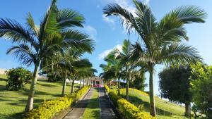 Hacienda La Chiquita, Nyaralók  Manizales - big - 68