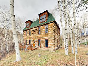 4BR Luxury Log Cabin - Hotel - Vail