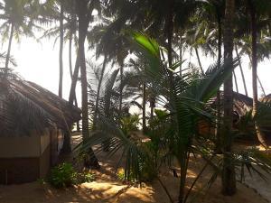 Blue Lagoon Resort Goa, Курортные отели  Кола - big - 96