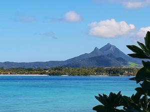 obrázek - Casa Frangipani Mauritius