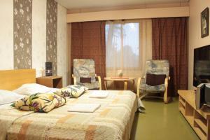 Hotel Villa Vanessa, Hotely  Siltakylä - big - 17