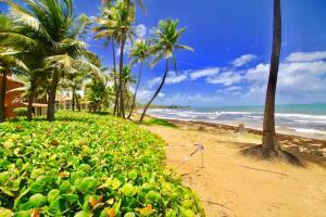 158 Beach Village