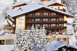 Hotel Enzian - Kleinarl