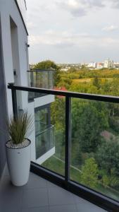 Apartament Mokotow nad Skarpa