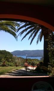 Gavila's Residenza Turistico Alberghiera - AbcAlberghi.com