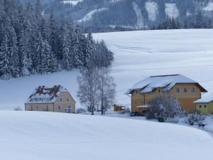 Ferienhaus Wohleser - Lachtal