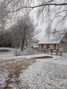 obrázek - Kodumajutus talu/ tünnisaun