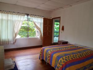 obrázek - Guacamayas House