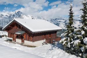Chalet Riquet - Ski/in-out - Jacuzzi - Hotel - Nendaz