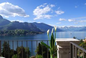 Borgo Le Terrazze - Residence - Bellagio